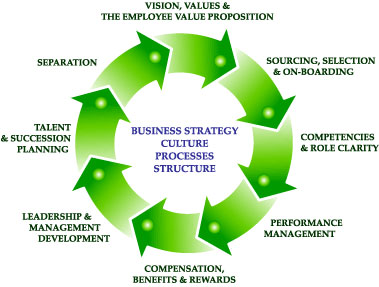 Establish organizational growth in a changing landscape.